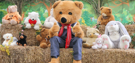 Father's Weekend - Donate a Bear Day - 19th & 20th June