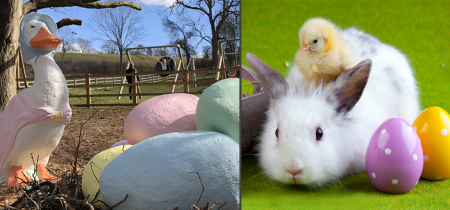 Hoppy Easter Adventure Trail - 1st to 28th April