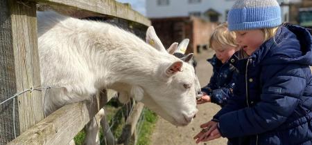 2 Hour Shared Farm & Indoor Play Barn Experience
