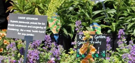 Arley Garden Festival
