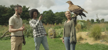 A Day with Birds of Prey