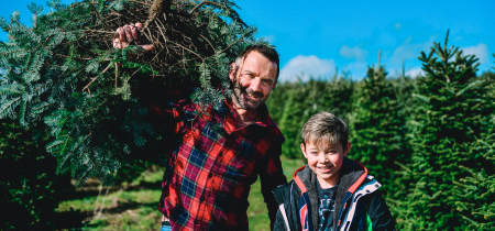 Site Pass for picking Christmas tree
