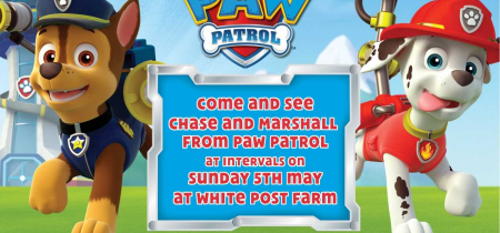 Paw Patrol - Meet Chase and Marshall