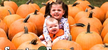 Pumpkin Season 2021