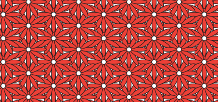 Repeat Patterns with Illustrator   Intermediate   3 Day Course
