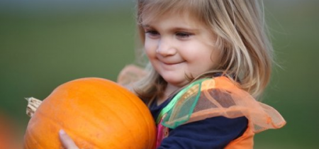 Spookley Pumpkin Festival 13-14, 20-21, 26-31 Oct