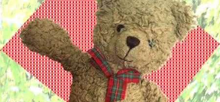 Teddy Bears' Picnic 2018
