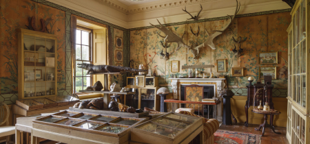 Tim Knox: The Rise and Fall of the Country House Museum - 13th November