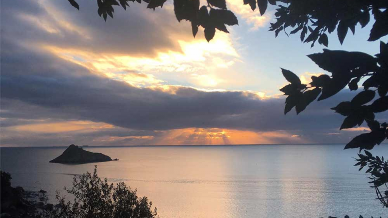 8-Week Mindfulness for Health and Well-being in Torquay