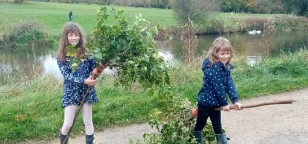 Tree Hunt and Broomsticks