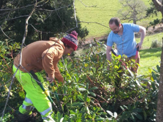 Volunteer every Tuesday in Sharpham's gardens