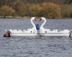 Boat Hire Image