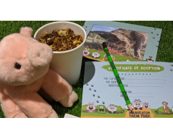 Adopt the Pigs