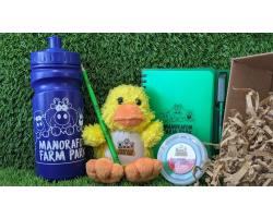 Duckling Gift Box Image