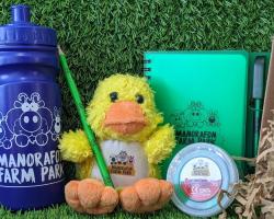 Duckling Gift Box