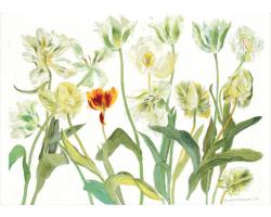 White Tulips greetings card