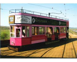 'No. 11 The Pink Tram' Postcard