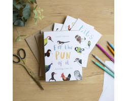 For the Pun of It (set of 6 greetings cards)