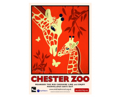 A3 Giraffe Chester Zoo Poster