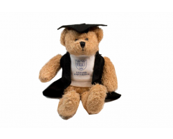 Oxford University Graduation Bear