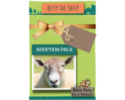 Betty the Sheep Adoption