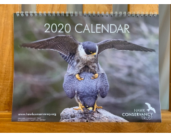 Hawk Conservancy Trust 2020 Calendar