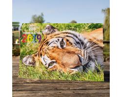 2019 Zoo Calendar