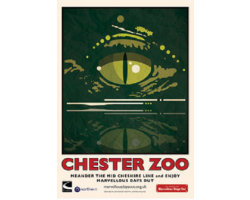 A3 Chester Zoo Croc Eye Poster
