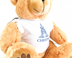 Chester Teddy Bear