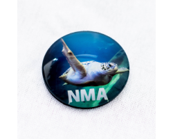 NMA Green Turtle Magnet