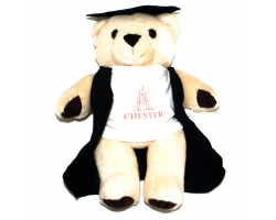 Chester Graduation Bear