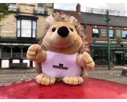 Beamish Cuddly Hedgehog