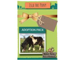 Isla the Pony Adoption