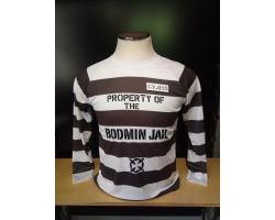 Adult L/S T-shirt Striped LG