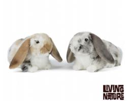 Lop Eared Rabbit - Grey/White