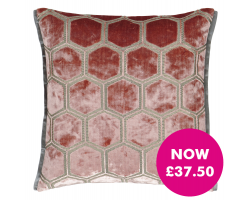 Designers Guild Manipur Coral cushion Image