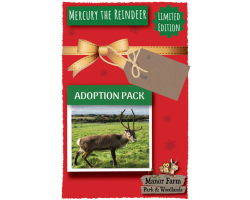 Mercury the Reindeer Adoption