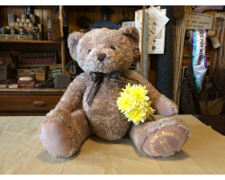 Beamish Golden Jubilee GIANT Bear - Limited Edition