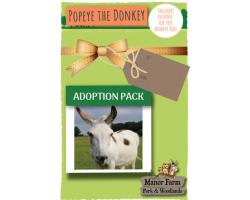 Popeye the Donkey Adoption