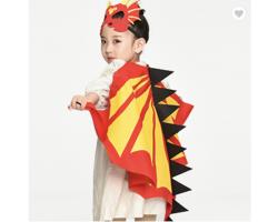Dragon Costume and Mask