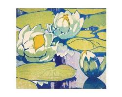 Water Lilies greetings card